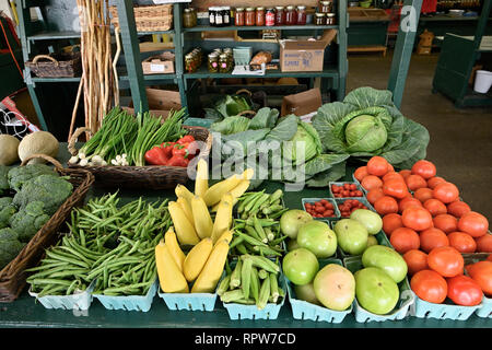 Fresh produce and vegetables on sale at the Curb Market, a local farmers market, in downtown Montgomery, Alabama, USA. - Stock Image
