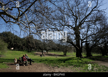 An elderly couple and their dog sit in the gardens of the Villa Borghese in Rome, March 8, 2008. Photo/Chico Sanchez - Stock Image