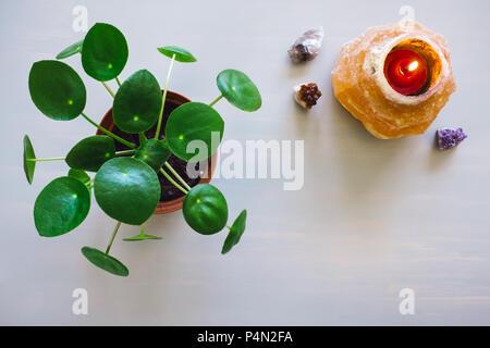 Pilea Plant, Himalayan Salt Candle Holder and Crystals on Grey Table with Space for Copy - Stock Image
