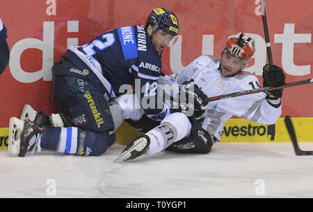 Ingolstadt, Germany. 22nd Mar, 2019. Ice hockey: DEL, ERC Ingolstadt - Kölner Haie, championship round, quarter finals, 4th matchday in the Saturn Arena. Ingolstadt's Patrick Cannone (l) and Cologne's Jason Akeson are in a duel with the gang. Credit: Stefan Puchner/dpa/Alamy Live News - Stock Image