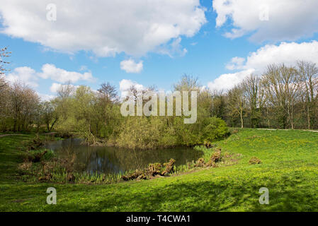 Gallows Hill nature reserve, Otley, West Yorkshire, England UK - Stock Image