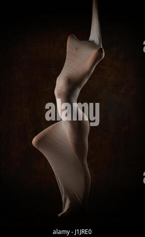 Bodyform - Stock Image