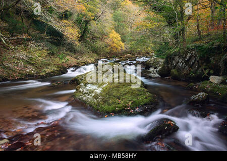 East lynn river near Watersmeet in autumn Exmoor National Park Somerset Uk - Stock Image