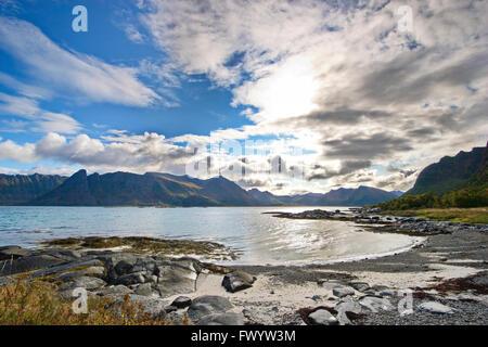 Beach on island Gimsøy on Lofoten in Norway - Stock Image