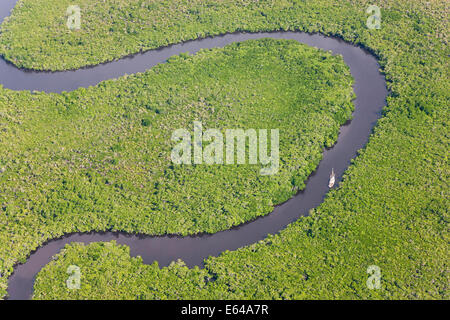 Sail boat & aerial view of rain forest, Daintree River, Daintree National Park, Queensland Australia - Stock Image