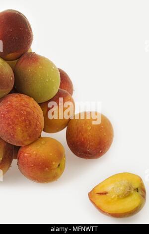 Fresh peaches. White background. Studio shot.         Ref: CRB538_103609_0030  COMPULSORY CREDIT: Martin Harvey / Photoshot - Stock Image