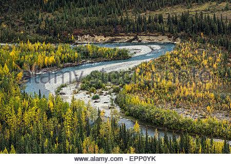Denali national park - Alaska (USA) - Stock Image