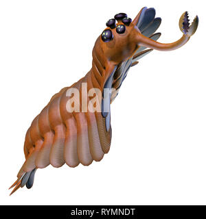 Cambrian Opabinia - Opabinia was a carnivorous marine fish that lived in the seas of the Cambrian Period. - Stock Image