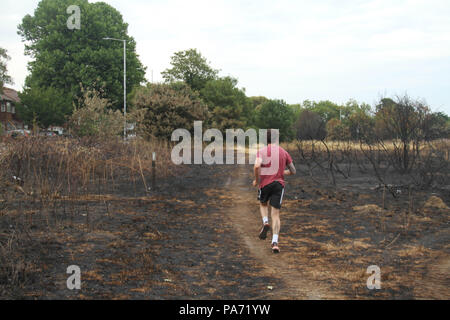 Wansted Flats, UK: 20 July 2018: A man jogs on a path parallell to Lake House Rd on the  churred Wanstead flats, the scene of the July 15th fire where around the area of 100 football pitches was burnt on the tinder-dry flats. 225 firefighters and 40 fire engines tackled the blaze in what has been described as the largest grass fire ever seen in the capital. Credit: David Mbiyu/ Alamy Live News - Stock Image