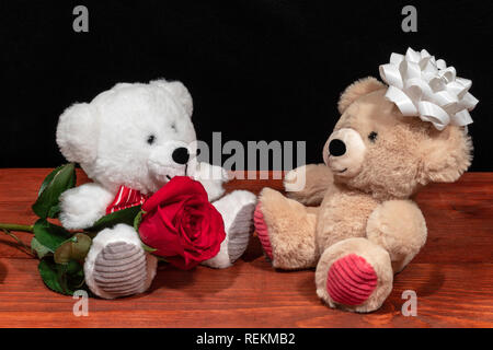 Two cute cuddly teddy bears with single red rose iand white bow on wooden table on dark background. Valentines, Mothers Day, Easter, Christmas, Weddin - Stock Image