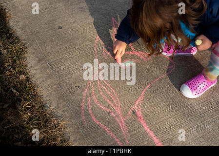 Looking down on a 4-year old girl holding sidewalk chalk on a sidewalk during the spring. - Stock Image