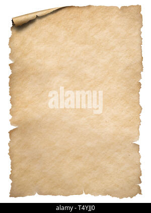 Old torn edges paper sheet isolated on white - Stock Image
