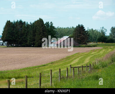 Ploughed field and barn Fraser valley, British Columbia, Canada - Stock Image