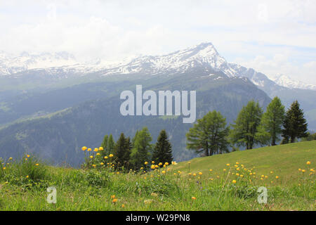 Early summer in Canton of Grisons, Switzerland. - Stock Image