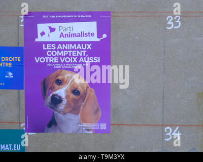 Poster of the 'Parti Animaliste' a French party in next European election for the rights of animals, featuring a dog. In Auch, France, Circa May 2019 - Stock Image
