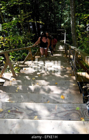 Visitors climbing steep wooden staircase Canyon Sainte Anne River Park - Stock Image