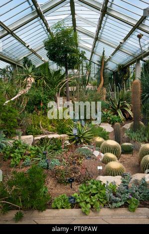 Inside The Princess Of Wales Conservatory in The Royal Botanic Gardens Kew Gardens London England UK - Stock Image