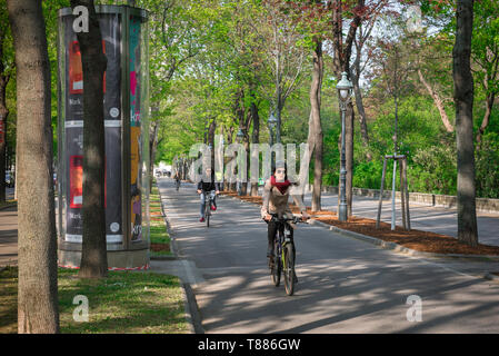 City Cycle Lane, view of a young woman riding her bike on a cycle lane in the Ringstrasse in central Vienna, Wien, Austria. - Stock Image