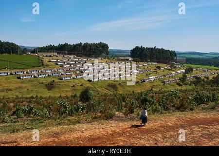 Kenya, Kericho county, Kericho, tea picker village - Stock Image