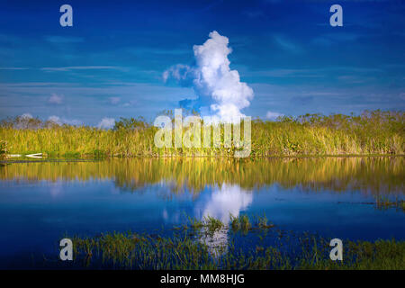 A beautiful morning in the Florida Everglades with smoke from a controlled burn sending up a cloud in the distance. - Stock Image
