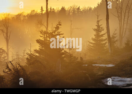 Sunset seen from a slope of Wielka Sowa (Great Owl) mount in Landscape Park of Gory Sowie (Owl Mountains range) in Central Sudetes, Poland - Stock Image