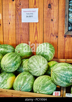 Watermelon fruit stacked on display for sale at a roadside farm or farmer's market in rural Alabama, USA. - Stock Image