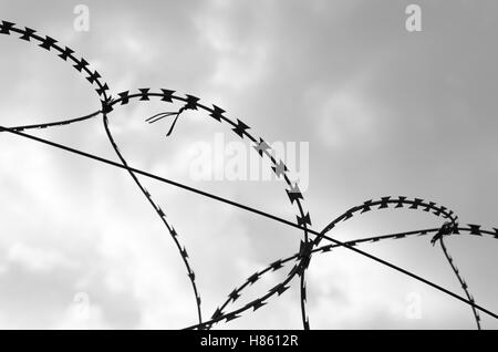 isolated barbed wire with cloudy sky - Stock Image