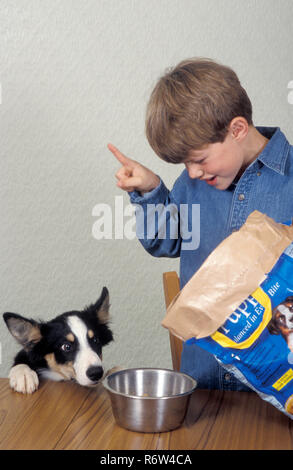 young boy training dog to wait for food - Stock Image