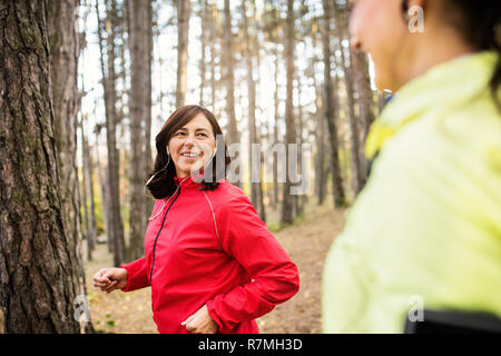 Two female runners with earphones jogging outdoors in forest in autumn nature, talking. - Stock Image