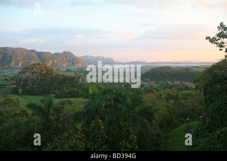 Cuba, Vinales. Royal palms and mogote limestone formations in Valle de Vinales. Photo CUBA1378. Copyright Christopher - Stock Image