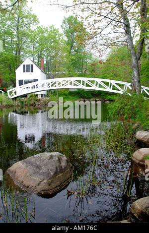Footbridge over Pond Mt Desert Island Maine - Stock Image