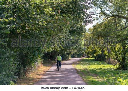 Man cycling along the Thames path near Richmond, England - Stock Image