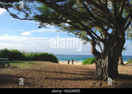 North Shore, Oahu, Hawaii - Stock Image