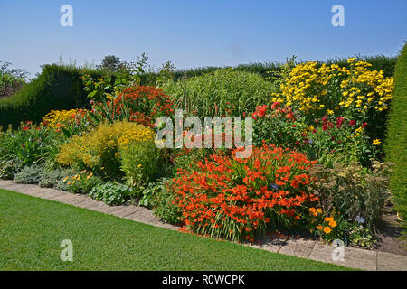 A colourful enclosed Garden 'Room' well planted with mixed planting including, crocosmia, heleniums, dahlias, coreopsis and rudbeckia and grasses - Stock Image