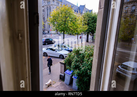 Strasbourg, Alsace, France, view from window, street, cars, young man walking the dog, - Stock Image