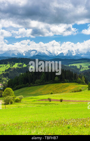High Tatra mountains range seen from Pieniny National Park in Poland. - Stock Image