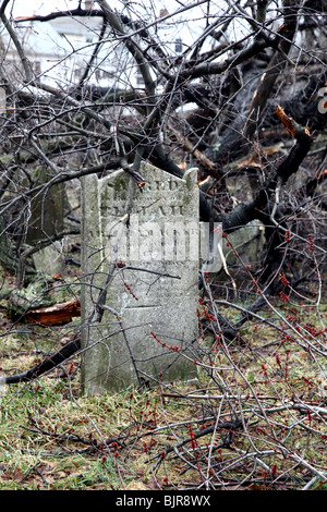 Old gravestone in a cemetery after a late winter wind storm - Stock Image