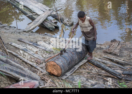 A woman opening a sago palm trunk with two axes, Swagup village, Upper Sepik, papua New Guinea - Stock Image