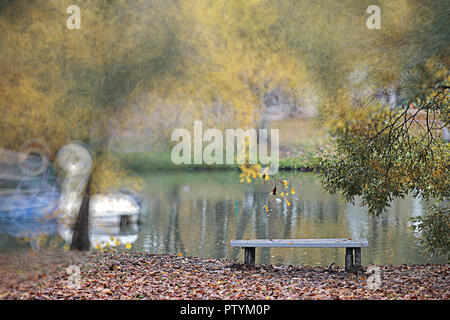 Autumn backgroun rain in the park during the day - Stock Image