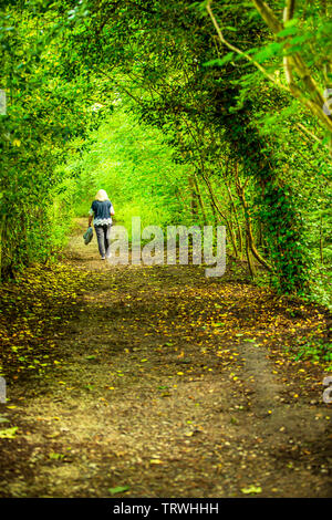 A woman walking alone though a wooded glade in a West Midlands park. - Stock Image