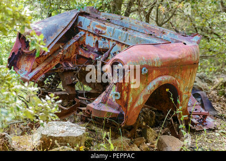 Rusty car wreck abandoned in a wood. Rusty details of the interiors wrapped by the plants of the forest. - Stock Image
