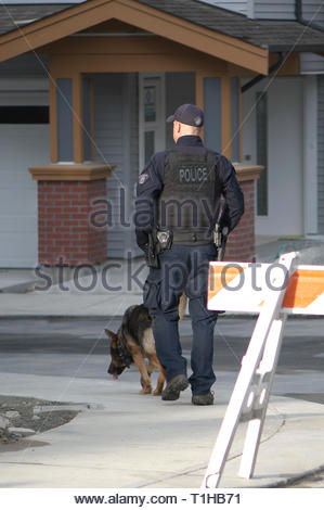 Maple Ridge, B. C. March 25, 2019. Canadian Prime Minister Justin Trudeau to address the media on affordable housing.  Canine unit securing premises. - Stock Image