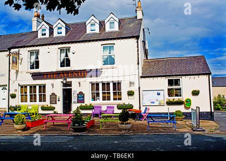 The Avenue Pub, High Shincliffe, County Durham, England - Stock Image