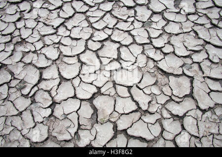 Dry cracked soil earth drought climate change global warming - Stock Image