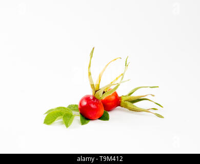 The rose hip or rosehip, also called rose haw and rose hep, is the accessory fruit of the rose plant berries isolated on white background. - Stock Image