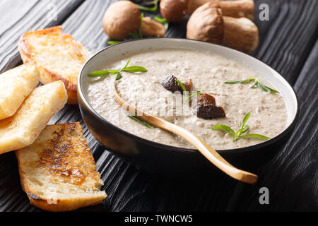 Vegetarian soup of fresh wild mushroom mashed potatoes close-up in a bowl served with toasts on the table. horizontal - Stock Image