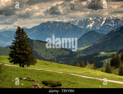 Trail to Mount Wendelstein in Upper Bavaria in the late Spring, featuring green gras, rocks and partly cloudy blue sky and a view of the Alps in the b - Stock Image