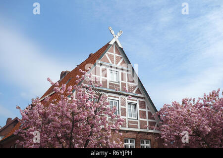 traditional half-timbered farm in the old country - Stock Image