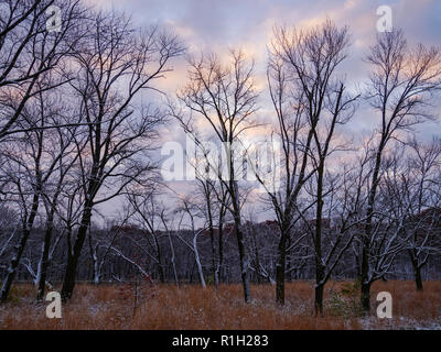 A winter morning along the Iowa River. - Stock Image