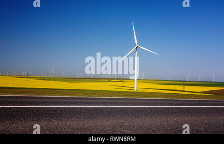 Wind turbines. Fields with windmills. Rapeseed field in bloom. Renewable energy. Protect the environment. - Stock Image